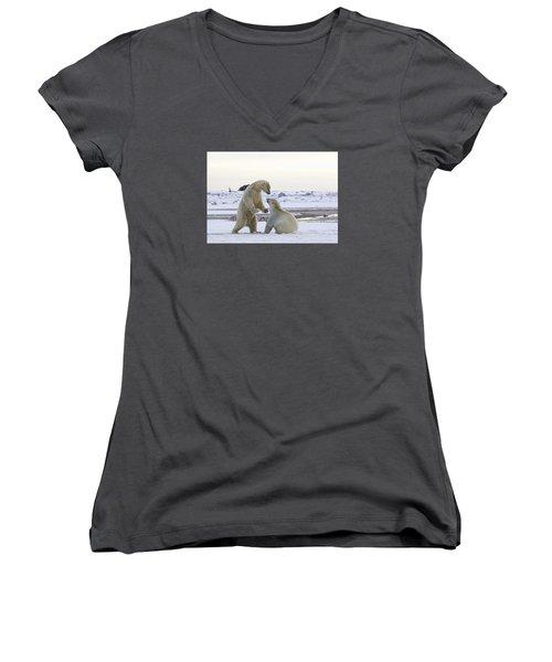 Polar Bear Play-fighting Women's V-Neck T-Shirt (Junior Cut)