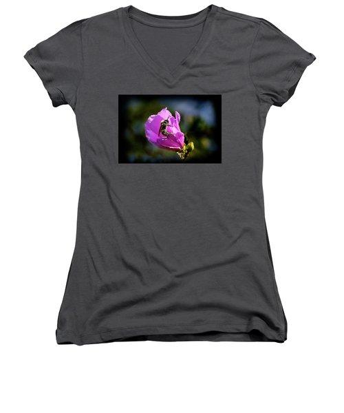 Pollen Clad Women's V-Neck