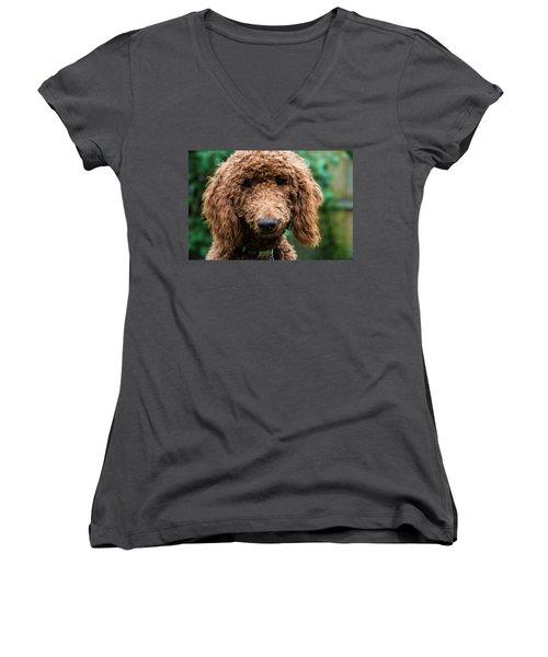 Poodle Pup Women's V-Neck