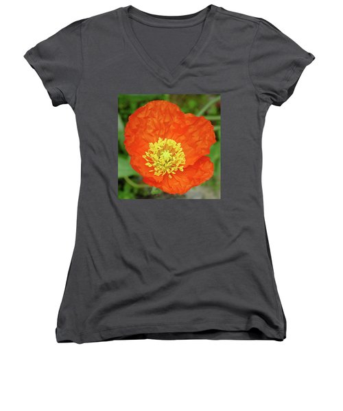 Poppy Women's V-Neck (Athletic Fit)