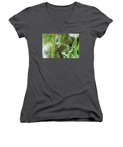 Portrait Of A Dragonfly Women's V-Neck