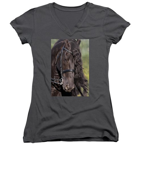 Portrait Of A Friesian Women's V-Neck T-Shirt (Junior Cut) by Wes and Dotty Weber