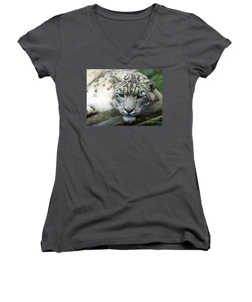 Portrait Of A Snow Leopard Women's V-Neck