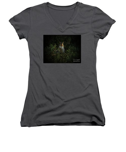 Portrait Of A Squirrel Women's V-Neck