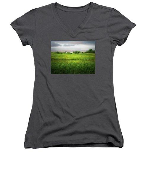 Prairie Farm Women's V-Neck T-Shirt