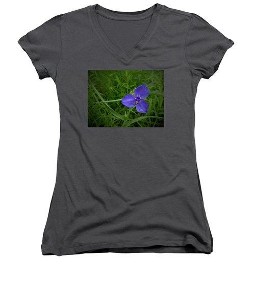 Prairie Rain Women's V-Neck T-Shirt