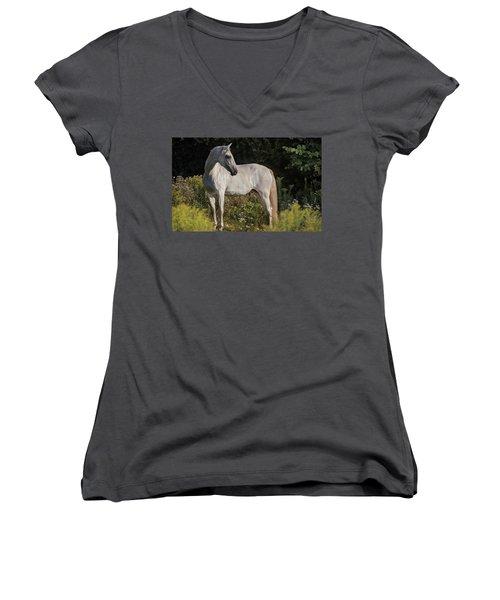 Pre Beauty Women's V-Neck T-Shirt