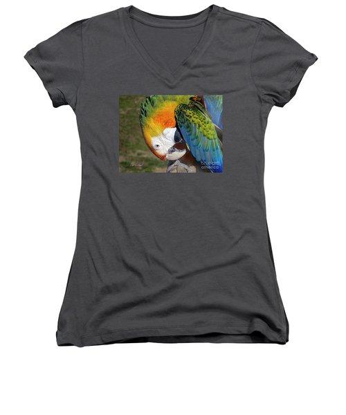 Preening Macaw Women's V-Neck T-Shirt (Junior Cut) by Melissa Messick