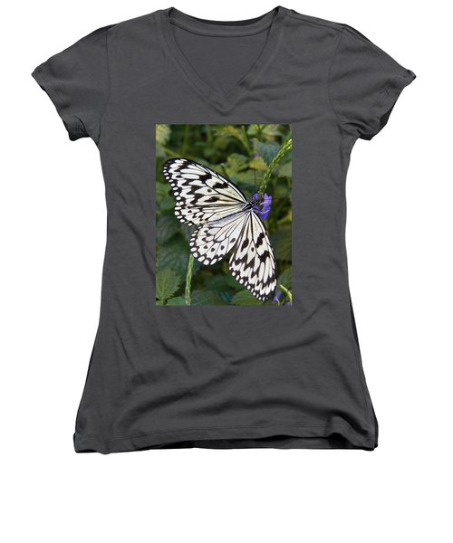 Pretty As A Picture Women's V-Neck T-Shirt