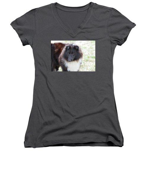 Pretty Black And White Sheltie Dog Women's V-Neck T-Shirt (Junior Cut) by DejaVu Designs