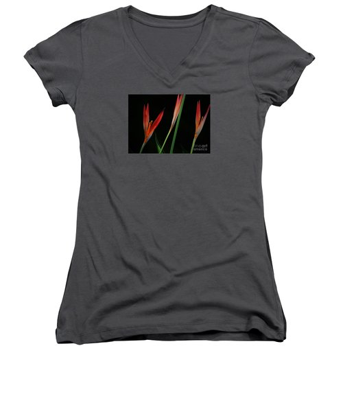 Pretty In Orange Women's V-Neck T-Shirt