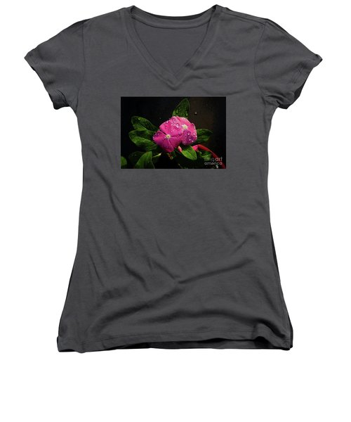 Pretty In Pink Women's V-Neck T-Shirt (Junior Cut) by Douglas Stucky