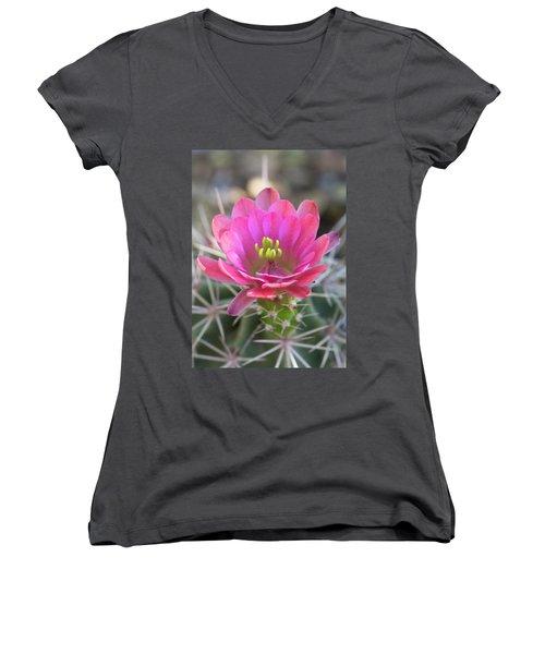 Women's V-Neck T-Shirt (Junior Cut) featuring the photograph Pretty In Pink Hedgehog  by Saija Lehtonen