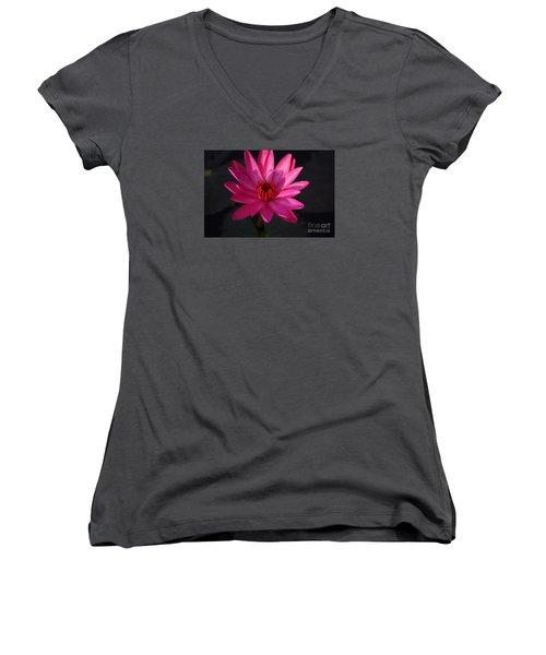 Pretty In Pink Women's V-Neck T-Shirt (Junior Cut) by John S