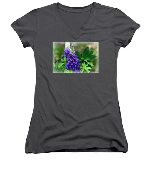 Women's V-Neck T-Shirt (Junior Cut) featuring the photograph Pretty In Purple by Clarice  Lakota