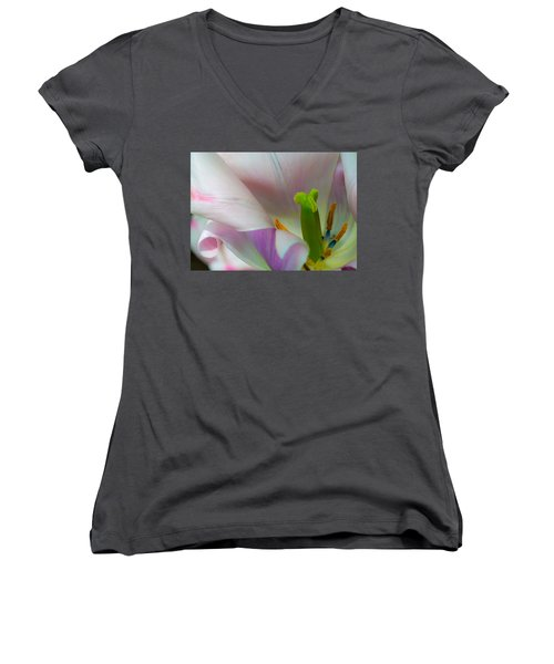 Private Showing Women's V-Neck