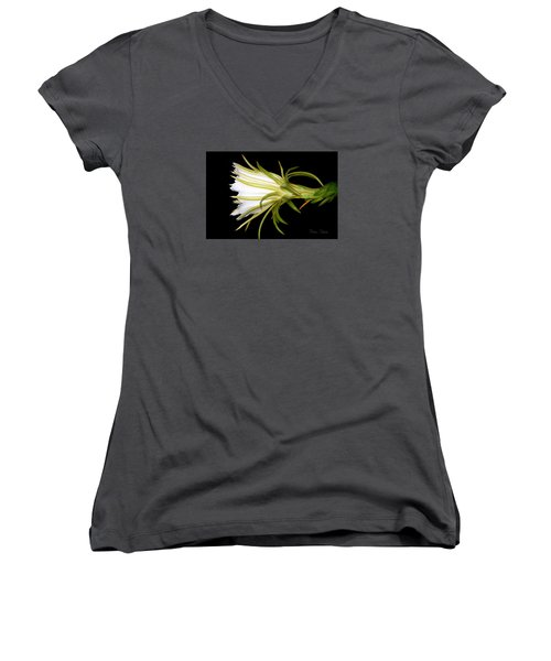 Profile Night Blooming Cereus Women's V-Neck T-Shirt (Junior Cut) by Barbara Chichester