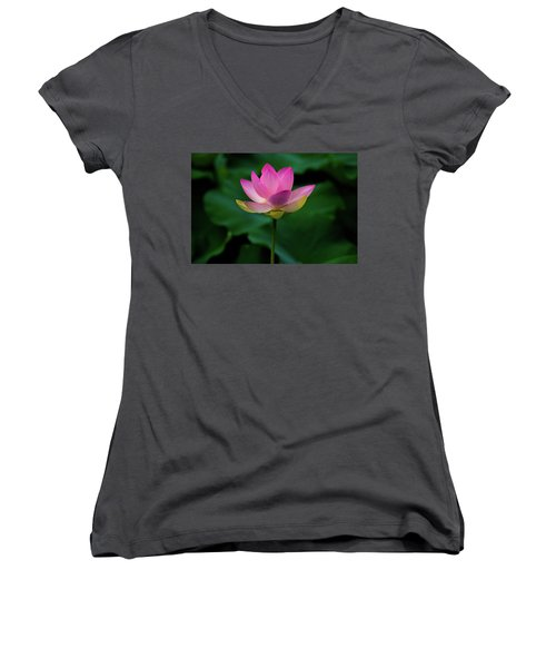 Profile Of A Lotus Lily Women's V-Neck