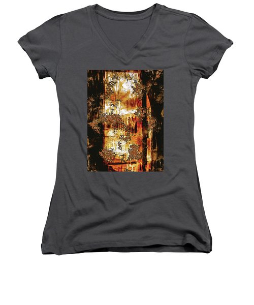 Prophecy Women's V-Neck T-Shirt (Junior Cut) by Paula Ayers