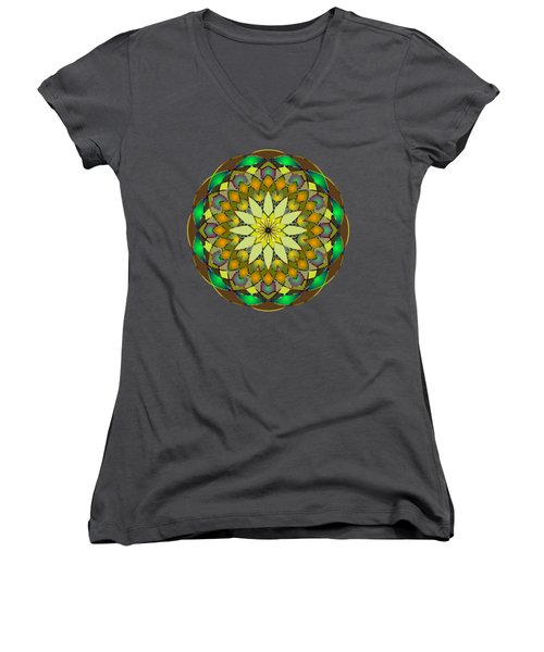 Psychedelic Mandala 008 A Women's V-Neck T-Shirt (Junior Cut) by Larry Capra