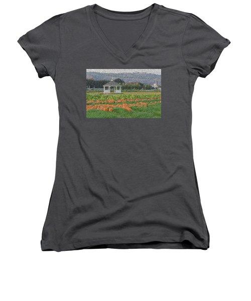 Pumpkin Field Women's V-Neck T-Shirt