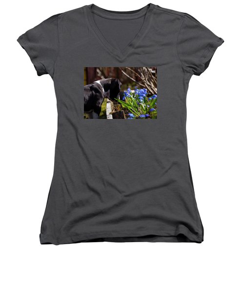 Puppy And Flowers Women's V-Neck T-Shirt