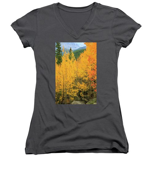 Women's V-Neck T-Shirt (Junior Cut) featuring the photograph Pure Gold by David Chandler