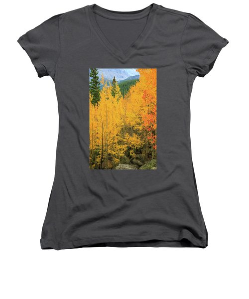 Pure Gold Women's V-Neck