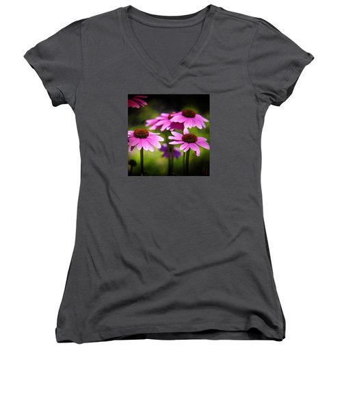 Purple Coneflowers Women's V-Neck T-Shirt (Junior Cut) by Milena Ilieva