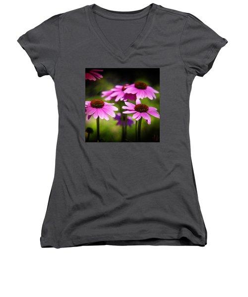 Purple Coneflowers Women's V-Neck