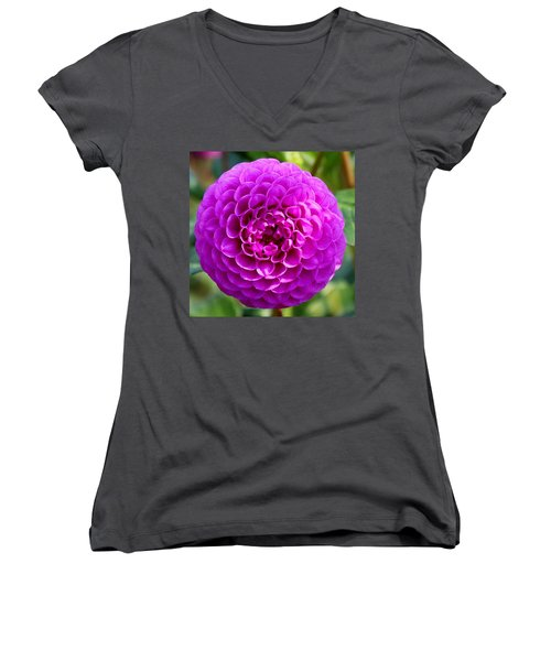 Purple Dahlia Women's V-Neck (Athletic Fit)