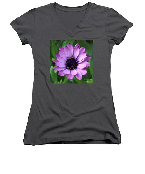 Purple Daisy Square Women's V-Neck (Athletic Fit)