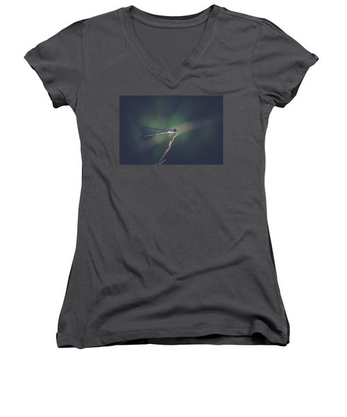 Women's V-Neck T-Shirt (Junior Cut) featuring the photograph Purple Damsel by Shane Holsclaw