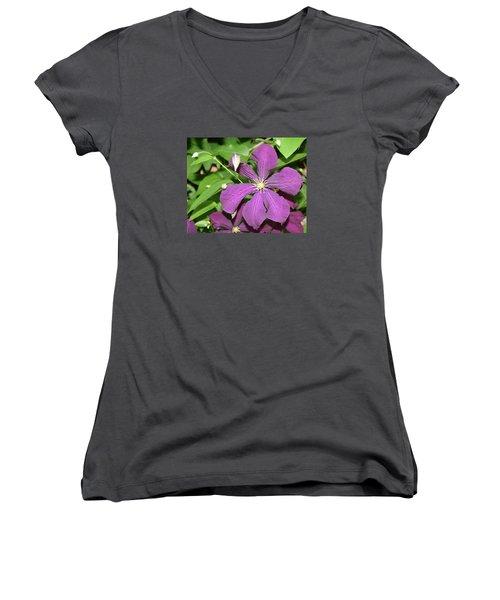 Purple Delite Women's V-Neck (Athletic Fit)