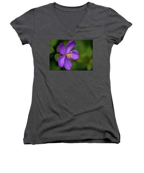 Purple Flower Macro Women's V-Neck