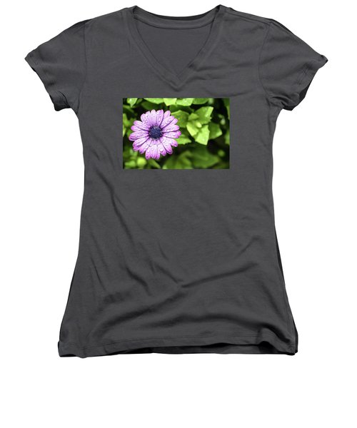 Purple Flower On Green Women's V-Neck T-Shirt