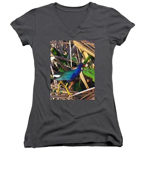 Purple Galinule 000 Women's V-Neck T-Shirt (Junior Cut) by Chris Mercer