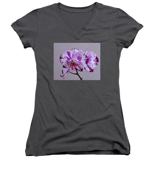 Purple Moth Orchid Women's V-Neck T-Shirt
