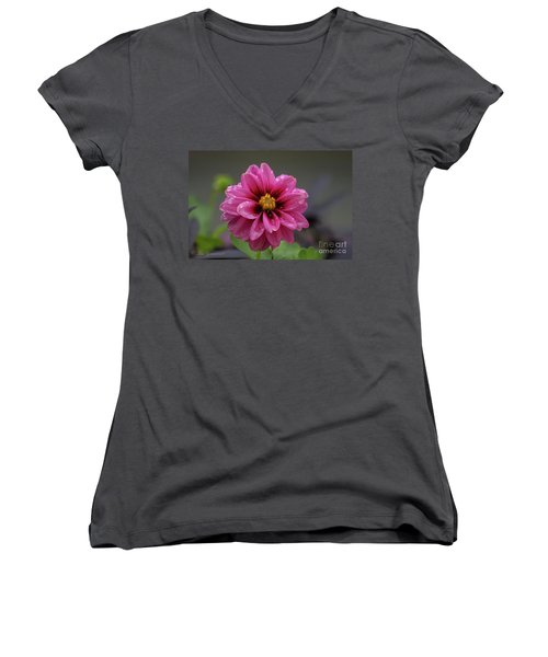 Purple  Passion Women's V-Neck (Athletic Fit)