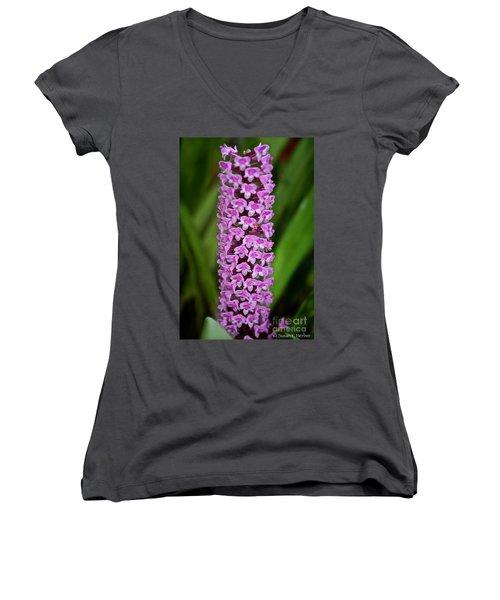 Purple Pillar Women's V-Neck T-Shirt