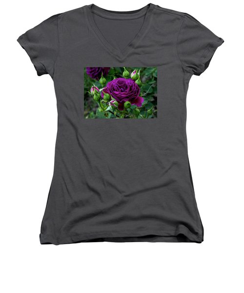 Purple Rose Women's V-Neck