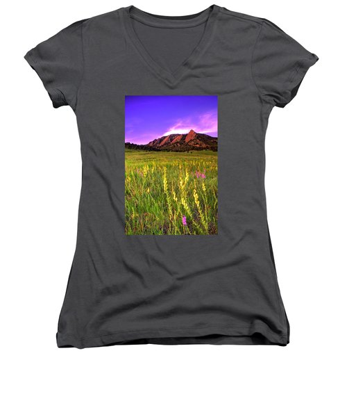 Purple Skies And Wildflowers Women's V-Neck T-Shirt