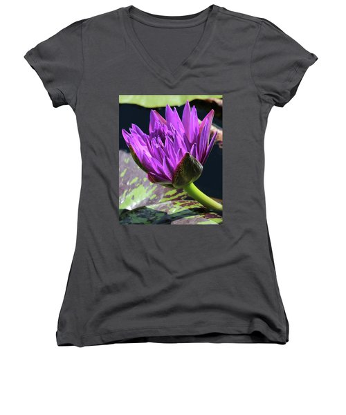 Purple Water Lily Women's V-Neck