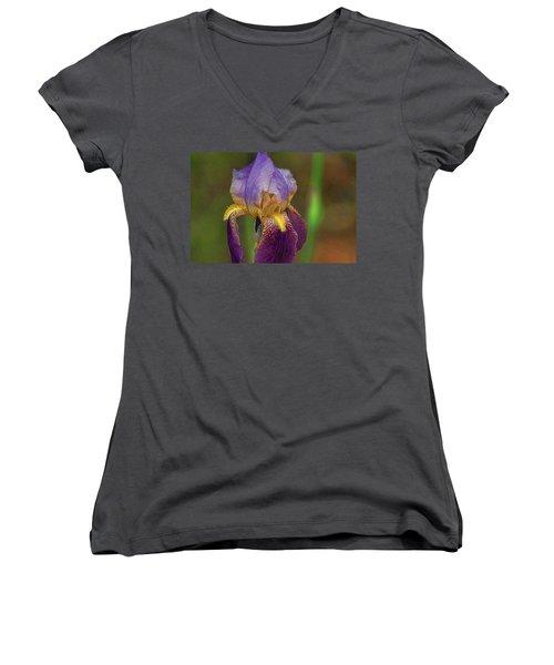 Purplish Iris Women's V-Neck T-Shirt (Junior Cut) by Rick Friedle