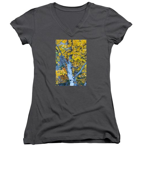 Quaking Aspen Women's V-Neck (Athletic Fit)