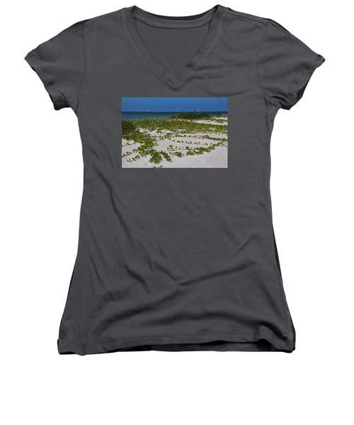 Railroad Vines On Boca IIi Women's V-Neck T-Shirt