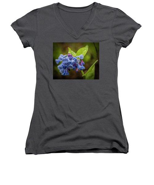 Rain Drop Bells Women's V-Neck T-Shirt