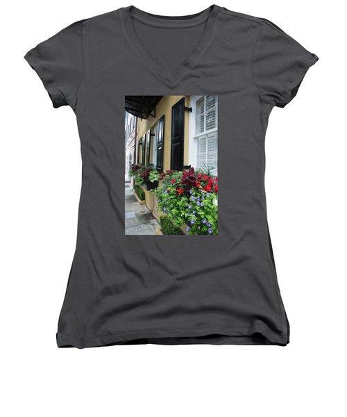 Rainbow Beauties Women's V-Neck T-Shirt (Junior Cut) by Ed Waldrop