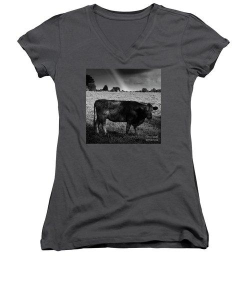 Rainbow Cow Women's V-Neck