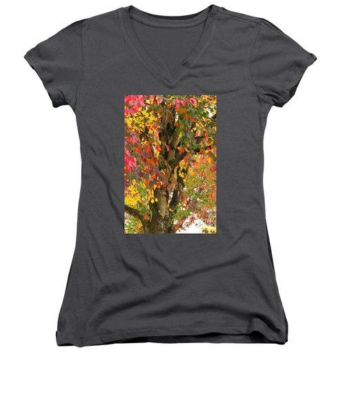 Rainbow Maple Women's V-Neck T-Shirt (Junior Cut)